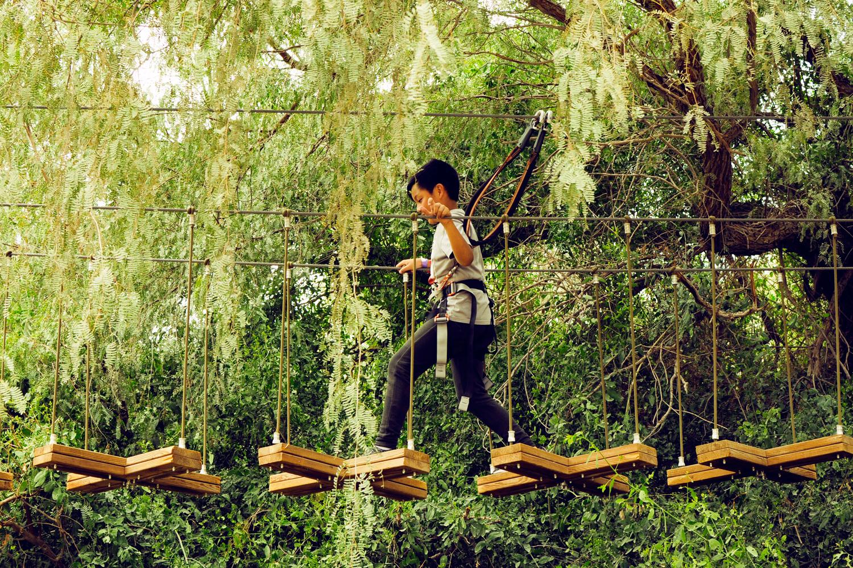 Take the kids to Dubai's Aventura Parks
