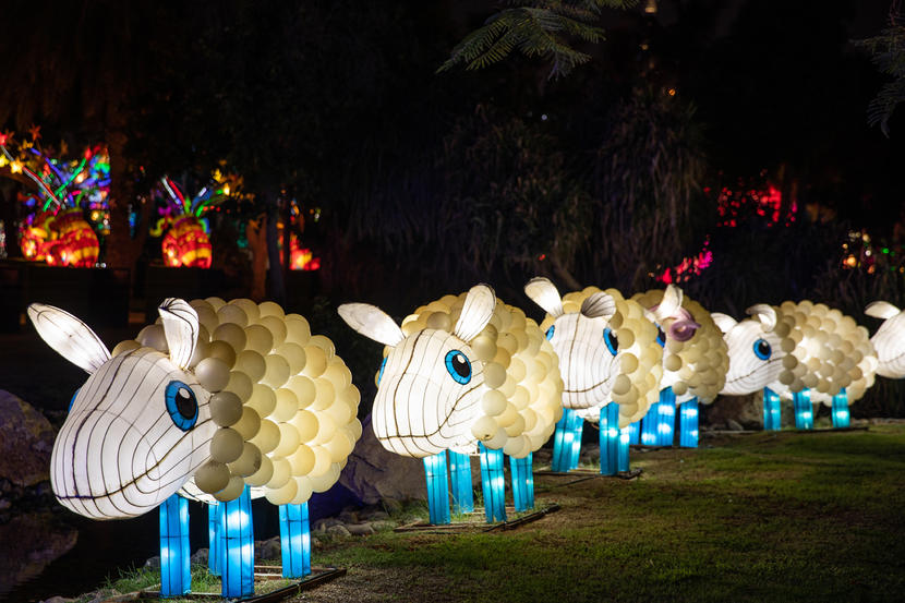 In Pictures Dubai Garden Glow Reopens For 2020 Winter Season Attractions Time Out Dubai