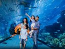5 Hang with marine life at Dubai Aquarium & Underwater Zoo This huge attraction features a 270-degree walk-through tunnel, an Underwater Zoo - located on Level 2 above the main aquarium tank - and presents the bio-diversity in different ecological zones including Rainforest, Rocky Shore and Living Ocean. It makes for a fun time for all the family and it won't fail to amaze you with presentations and tours on offer.Tickets start at Dhs55 for children and Dhs70 for adults For further information: visit www.thedubaiaquarium.com or call: 04 448 5200.