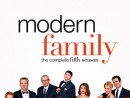 Modern Family     Extremely funny, this show is almost the anti-Seinfeld in its warmth. A messed-up extended family (including sitcom royalty Ed O'Neil – Al Bundy in Married… with Children) get on with their daily routines and learn to love each other and life along the way. Take away the occasional schmaltzy moment, though, and you have some brilliantly realised characters in genuinely hilarious situations with some proper zingers of dialogue.