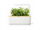 Click & Grow Smart Herb GardenDhs279. www.virginmegastore.ae