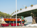 Forest bridges have started popping up on Palm Jumeirah| Image #9 | Time Out Dubai