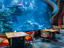 Nathan Outlaw at Al MaharaBritish Michelin-starred chef Nathan Outlaw took to the helm and revamped this restaurant at the famous Burj Al Arab Jumeirah in 2017. It serves up some top seafood and fish dishes, and even better you can next to an aquarium for a unique experience.Open daily 12:30pm-3.3pm, 7pm-11.30pm. Burj Al Arab, Umm Suqeim (04 301 7600).