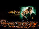 Harry Potter in Concert The classic J.K. Rowling story will be screened at Dubai Opera, with John Willliams' score played live by a concert orchestra.From Dhs175. Mar 1-2. Dubai Opera, Downtown Dubai, www.dubaiopera.com.