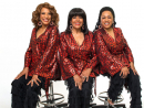 The SupremesSeptember 11-12For songs of a bygone era, head to the cruise-liner from a bygone era at Port Rashid for a two-off stint by iconic Motown staples The Supremes. Diana Ross-less, but soulful nonetheless, the three-piece will regale 1960s feels with tracks like Baby Love, Stop! in the Name of Love and You Keep Me Hangin' On over two nights aboard the QE2.From Dhs180. Sep 11-12. QE2, Port Rashid, www.otbuae.com.