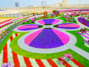 Floral fiestaDubai Miracle Garden is back, and the eighth edition brings a 400-metre walking track that will be used for daily activities, with costume and floral parades, street performers, Zumba sessions, and for leisurely walks to admire the colours, no less.Dubai Miracle Garden, Al Barsha South 3, Dubailand (04 422 8902).