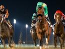 Go horseracing at Meydan RacecourseThe 2020 Dubai World Cup Carnival season kicks off on Thursday January 2, and runs every Thursday night through until the 2020 Dubai World Cup on Saturday March 28.Free entry. Meydan Racecourse, Nad Al Sheba, www.dubairacingclub.com.