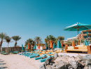 Check out a brand-new beach clubParadise Beach can be found at Rixos The Palm Dubai Hotel & Suites and the swanky new spot is promising to bring Miami-vibes to the sandy shores of Dubai.Open daily 10am-late. Rixos The Palm Dubai Hotel & Suites, Palm Jumeirah (050 367 9940).
