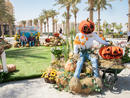 First look: Celebrate Halloween with the kids at Dubai's biggest pumpkin patch