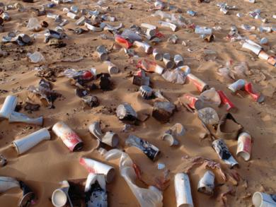 Save the environment in Dubai
