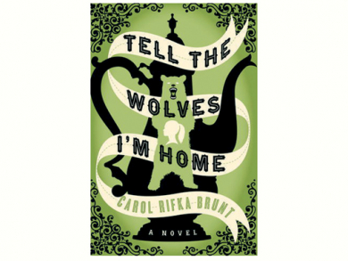Tell the Wolves I'm Home book review