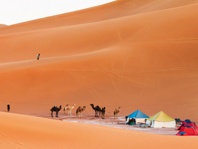 Best camping spots in the UAE