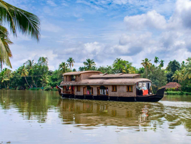 Kerala: the land of waves, wildlife and waterfalls