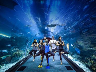 Underwater yoga returns to The Dubai Mall
