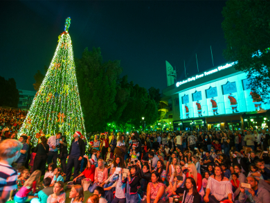 The Irish Village reveals date for 2018 Christmas tree lighting