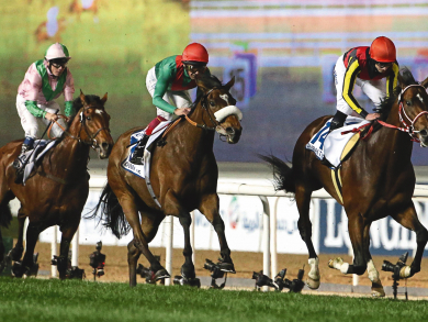 Dubai World Cup 2019: your ultimate guide