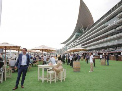Dubai World Cup 2019: Gates open at Meydan Racecourse