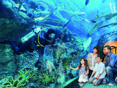 Summer deal 2019: Free aquarium and cinema access for kids