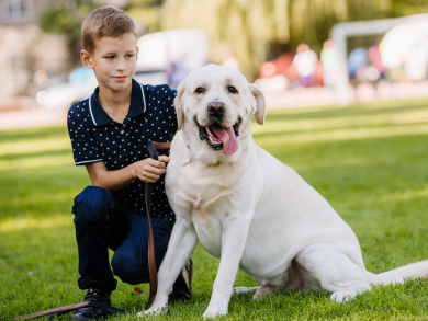 Grab your dog and head to the Shampooch Halloween party in Dubai's JLT