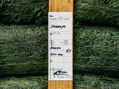 Track your Christmas tree's journey from Denmark to Dubai