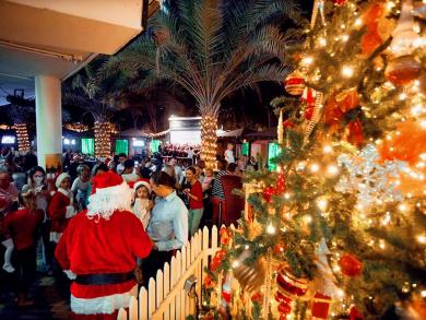 McGettigan's to throw Christmas tree lighting parties