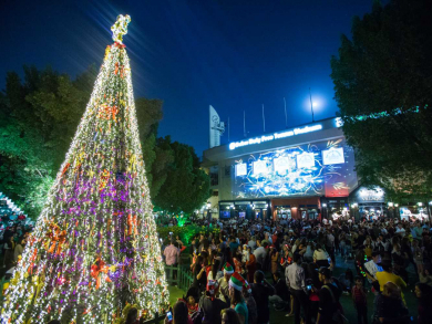 The Irish Village reveals date for 2019 Christmas tree lighting