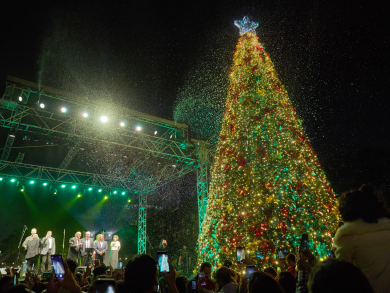 In pictures: The Irish Village's Christmas tree lighting 2019