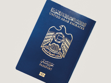 UAE labelled as 'highest climber' in terms of passport power