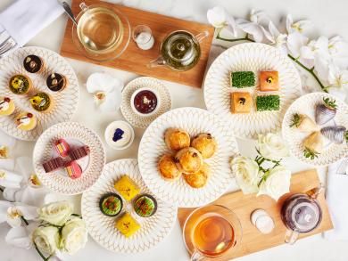 Plato's Tea Lounge