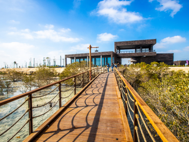 Amazing pictures of Abu Dhabi's new Jubail Mangrove Park