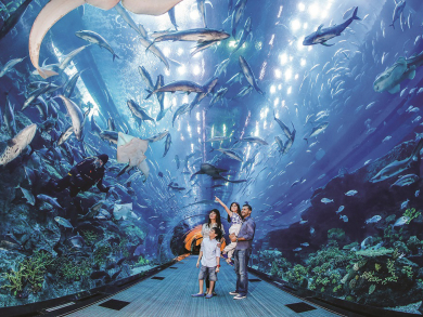 Get huge savings on Dubai's top attractions