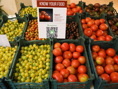 Free fruit and veg for all Dubai healthcare staff