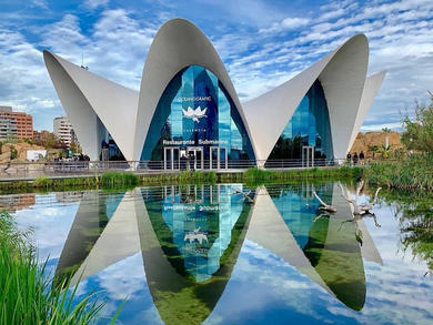 You can explore Europe's largest aquarium from home in the UAE