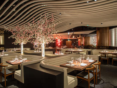 STK JBR relaunches ladies' night