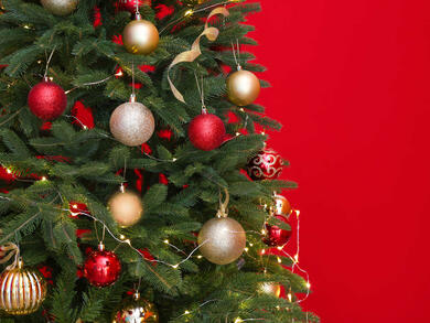 Christmas in Dubai 2020: Where to buy a Christmas tree in Dubai
