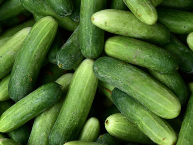 Cucumber Day returns to the UAE for the fourth year running