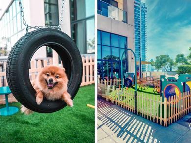 In pictures: Pet playground opens at Vida Emirates Hills