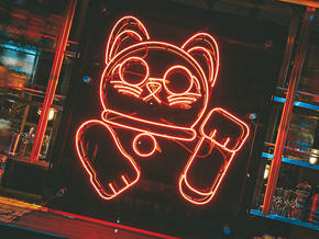 unlucky-cat-_4.jpg
